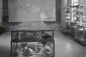Damiaanmuseum 1955 - copyright Damiaan Vandaag